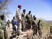 الجيش والدعم السريع يستردان موقعا من قبضة المتمردين بجبل مرة