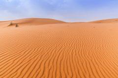 """القوات المصرية تنقذ """"3"""" سودانيين من الموت تاهوا في الصحراء"""