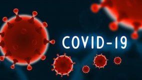 الصحة:(273) إصابة جديدة بفيروس كورونا و(17) وفاة