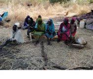 توزيع خيام وذرة للعائدين من معسكرات اللجوء بمحلية الكرمك