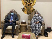 وزيرة الخارجية تلتقي رئيس مفوضية الاتحاد الأفريقي