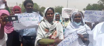 تنسيقية العاملين بالانتاج الحيواني بشمال دارفور تنظم وقفة احتجاجية