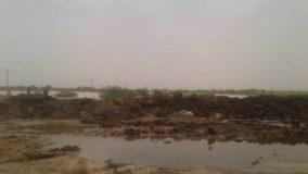 انخفاض منسوب نهر النيل الرئيسي والعطبراوي بمحطة عطبرة