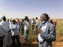 وزارة الانتاج بشمال كردفان تؤكد دعم تدريب المزارعين